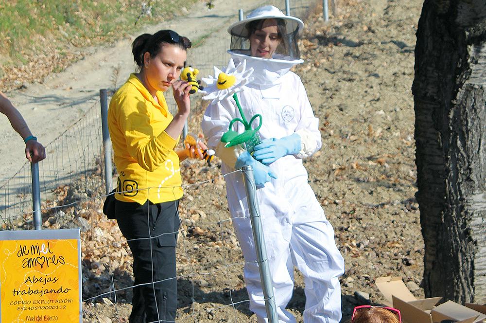 detalle apicultora corullon